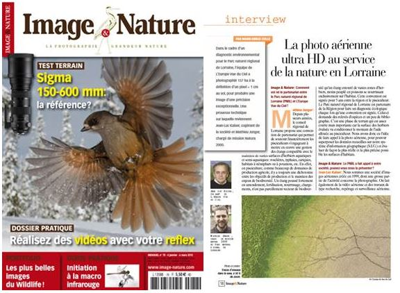 Article Image & Nature