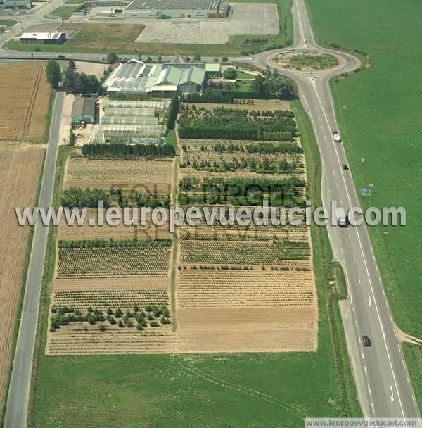 Photos a riennes de yvetot 76190 seine maritime haute for Jardinerie des jardins